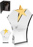 Black Glass Bottom Awards | DMAW07