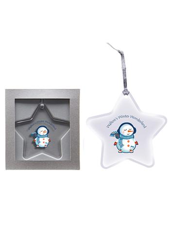 Star Acrylic Ornaments | IL1794STAR