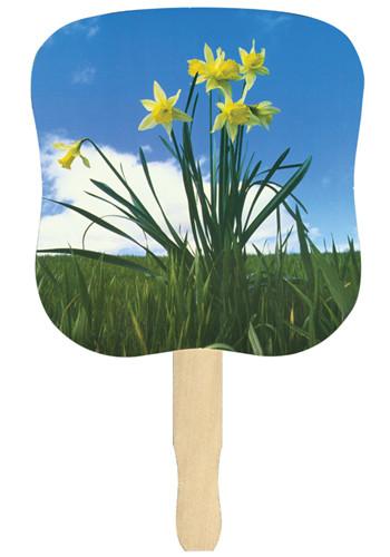 Daffodil Hand Fans | AK33055