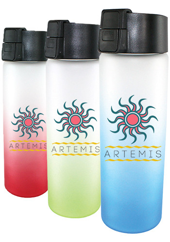 Customized 20 oz. Full Color Halcyon Frosted Glass Bottles