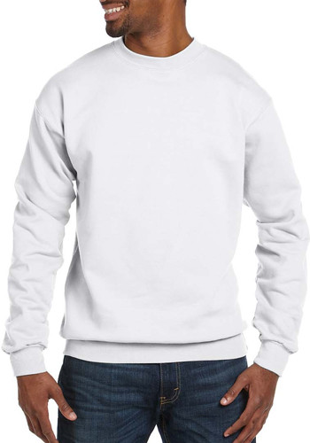 Hanes ComfortBlend Crewneck Sweatshirts   P160