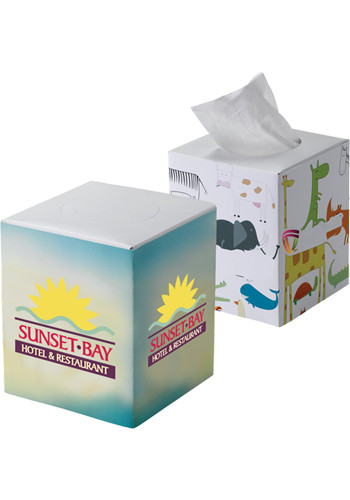Promotional Cube Tissue Boxes